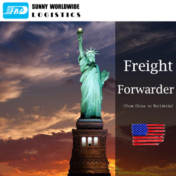 Air freight forwarder China to USA/UK/Germany/Europe/Canada/Japan Amazon DDP door to door