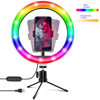 /product-detail/goldmore-camera-beauty-rgb-10inch-selfie-ring-light-youtube-with-dest-tripod-stand-phone-holder-best-ring-light-for-zoom-1600101257495.html