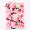 pink rose flower wall