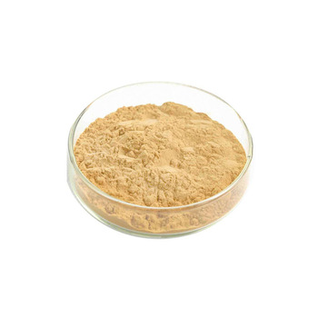 High quality medicine grade tongkat ali 200:1 powder