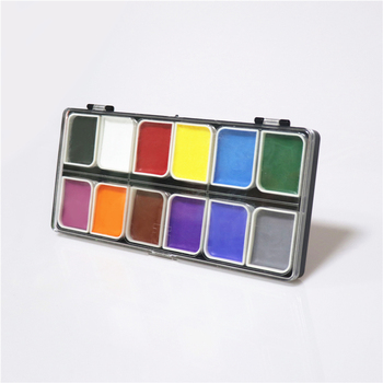 Professional Body Painting Kit 12 Colors Face Paint Kit Palette