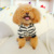 Pomeranian Teddy puppies clothes small dog autumn four-legged overall pet clothes