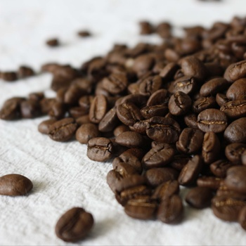 Top Quality Grade AA Roasted Coffee Beans Sale cheap now