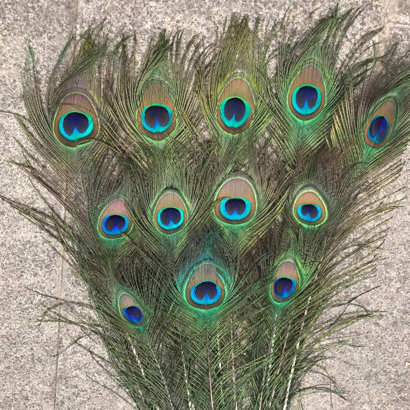 Simulation peacock customization Feather peacock 1.7m tail  Window decoration simulation peacock