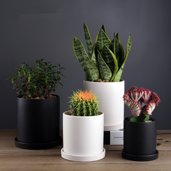 Nordic Modern Decorative Plant Pots Ceramic Cylinder Succulent Planter Plant Flower Pot with Tray Drainage Hole