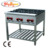 free standing gas range with 6 burners