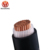 0.6/1 KV Single core 300 mm2 Cu/XLPE/SWA/PVC Power cable