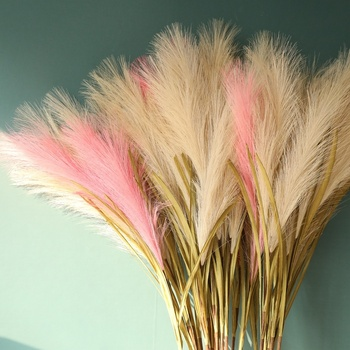 E-2936 Factory direct wholesale crafts simulation green plant white powder blue red artificial flower artificial pampas grass