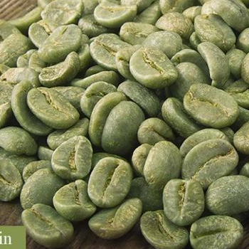 INDIAN COFFEE BEANS FOR EXPORT