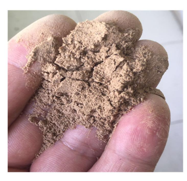 bio fertilizer bacillus amyloliquefaciens azotobacter rhizobium