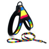 neon  harness and rope