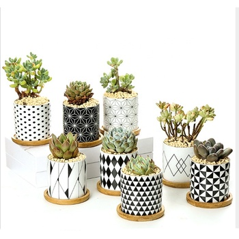 custom design cheap wholesale ceramic indoor plant pots