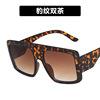 C5 Leopard