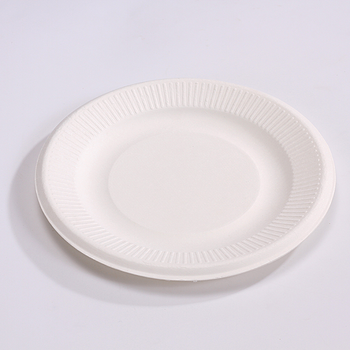 100% Biodegradable And Compostable Bagasse Food Packing Disposable Round Cake Plate