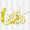 Pineapple clothes+leash