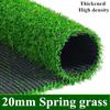 20ミリメートル春草