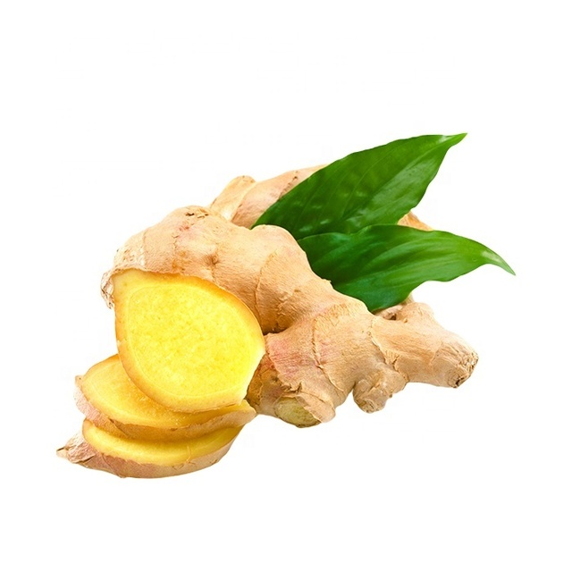 High quality dried fresh ginger market price per ton wholesale Ginger buyers for export in China Ginger