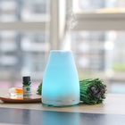 100 Drop Shipping Aromatherapy Diffuser 100 Ml Private Label Wholesale Ultrasonic Aromatherapy Diffuser Portable BPA Free Humidifier Essential Oil Aroma Diffuser