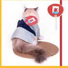 Clothes Good Quality Fresh And Lovely Polyester Material Japanese Yukata Pet Clothes