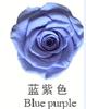 Blauw paars