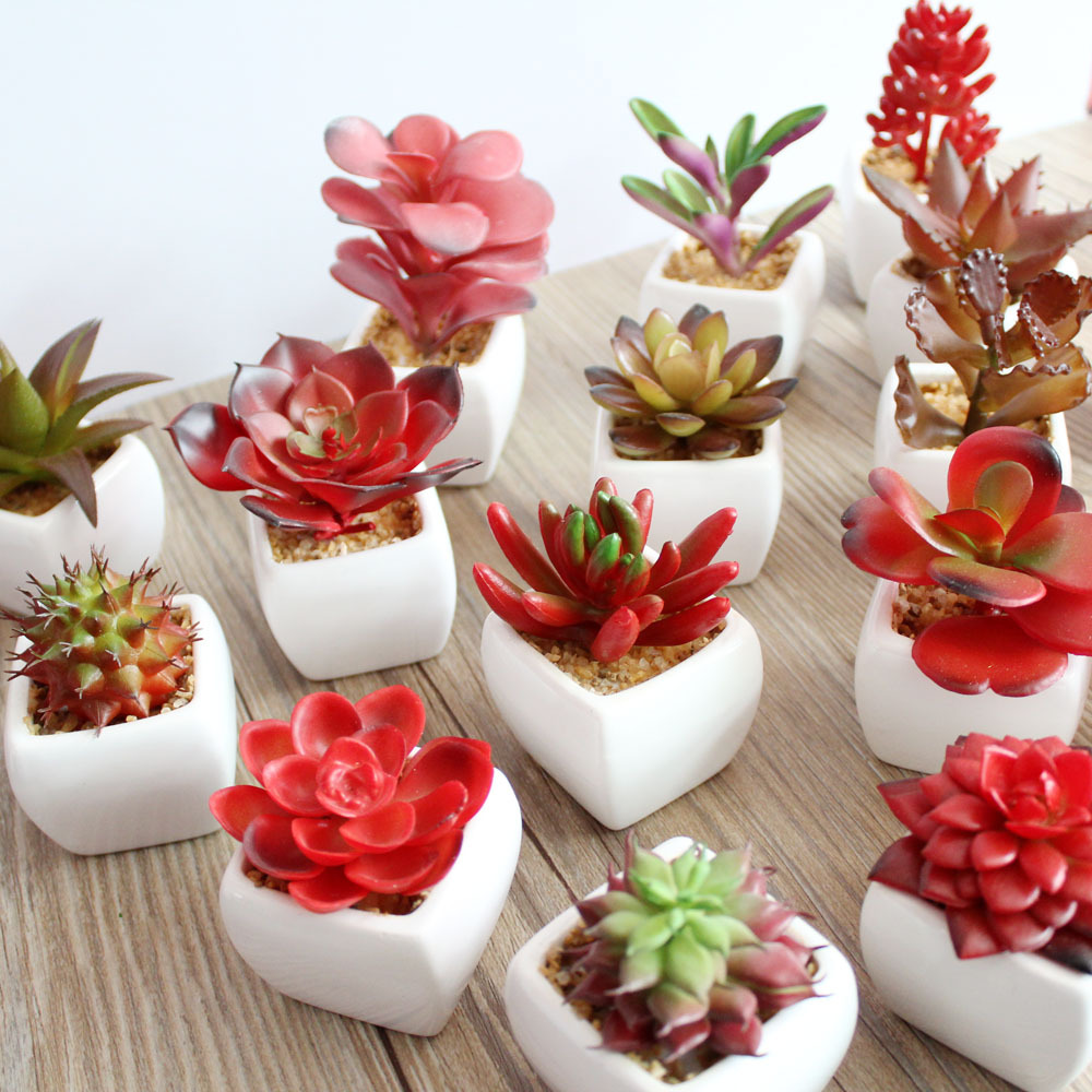 Artificial Assorted Potted Succulents Plants