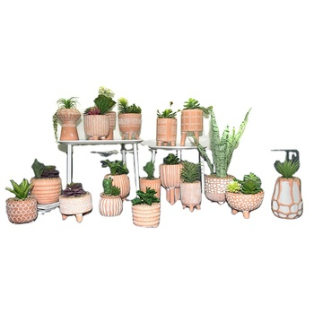 Best selling decorations garden flower plant ceramic pot with feet