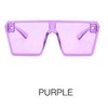 C9 Purple / Purple