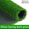35ミリメートル春ダーク草