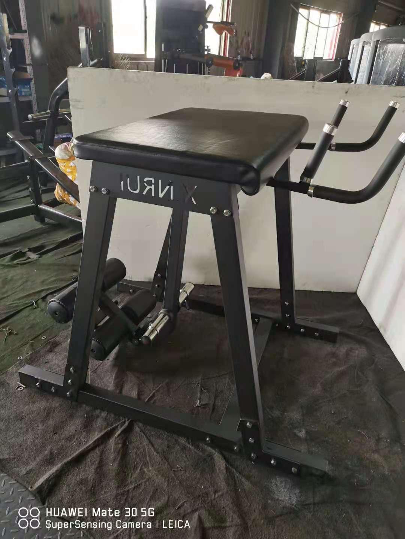 High quality Reverse Hyper Extension Bench Press