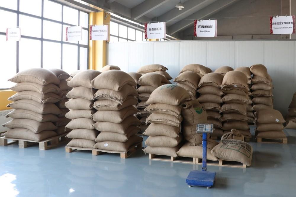 Factory Supply Roasted Yigacheffe Coffee Bean