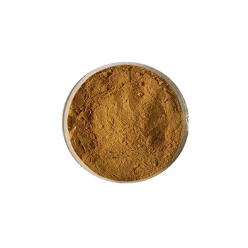High Quality Eurycoma Longifolia Jack Root Extract Powder/Tongkat Ali Herbal Extract/Tongkat Ali P.E. 100:1 200:1 Tongkat ali