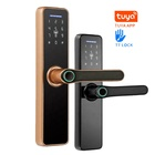 High Security Anti Theft Smart Lock Door Thumbprint Biometric Intelligent Electronic Fingerprint WiFi TTLock Door Lock