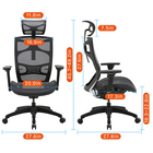 Chair Ergonomic Chair OEM Adults Capacity Computer Ergonomic Mesh Computer Office Chair