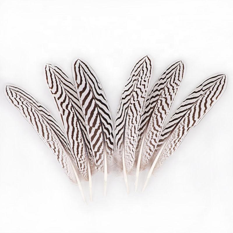 Высококачественные Натуральные узорчатые серебряные крылья фазана 15-22 см