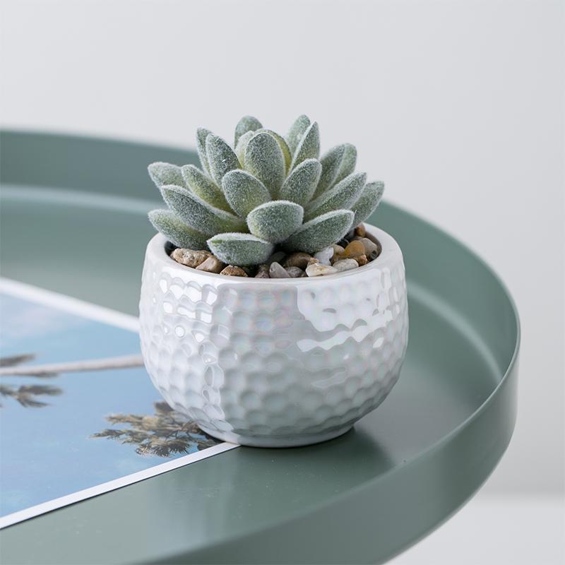 Mini Faux Aloe Potted plants Arrangements Potted tropical Succulents Cactus artificial plants