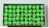 สีเขียว + สีเขียว