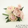 ASZ252