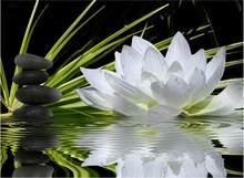 Алмазная картина 5D «сделай сам», вышивка крестиком, Алмазная мозаика, алмазные настенные наклейки, ваза для домашнего декора(Китай)
