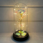 Rose Dome Rose Wholesale Battery Operated Led Lights Tall Clear Decorative Glass Rose Dome Flower