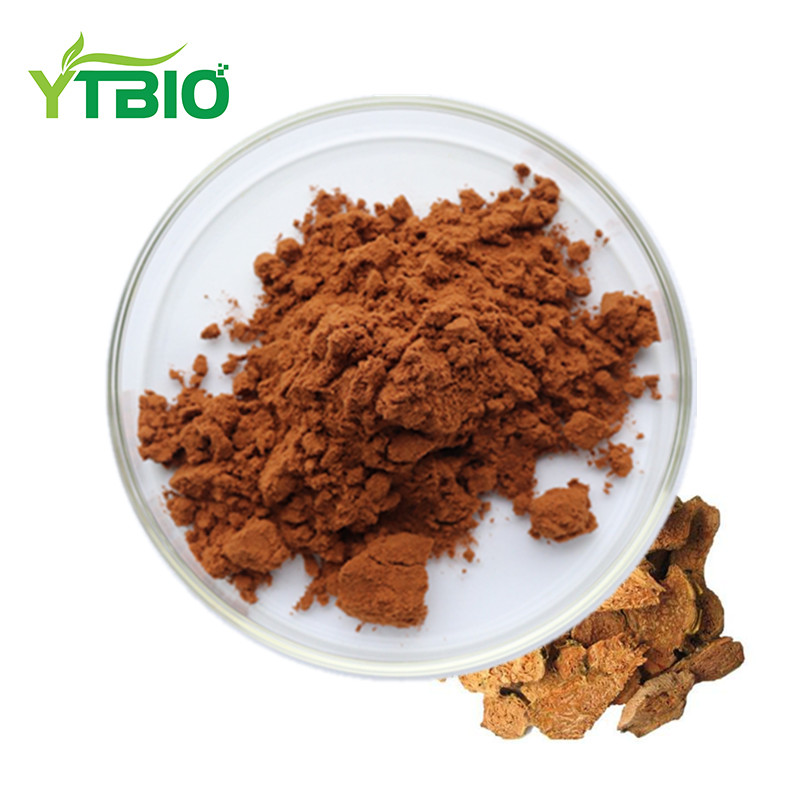 Herbal Extract Rhodiola Rosea Plant For Sale