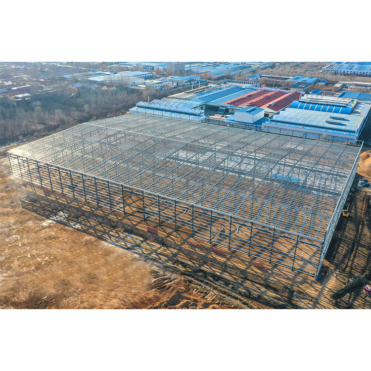 Prefabricated Steel Structure Warehouse Building Cheap Prices Storage Warehouse