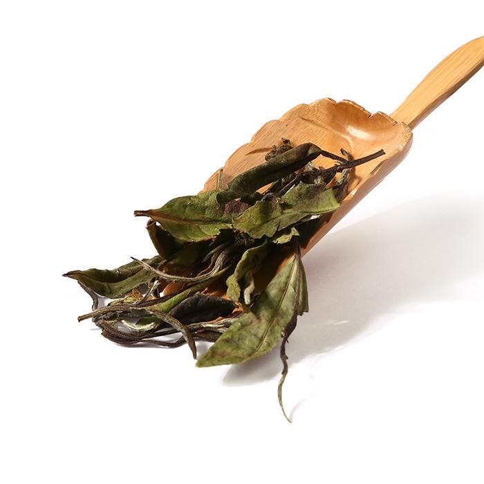 Popular Healthy Drinks White Peony Organic Tea Bai Mu Dan - 4uTea | 4uTea.com