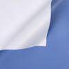102 Blue+White
