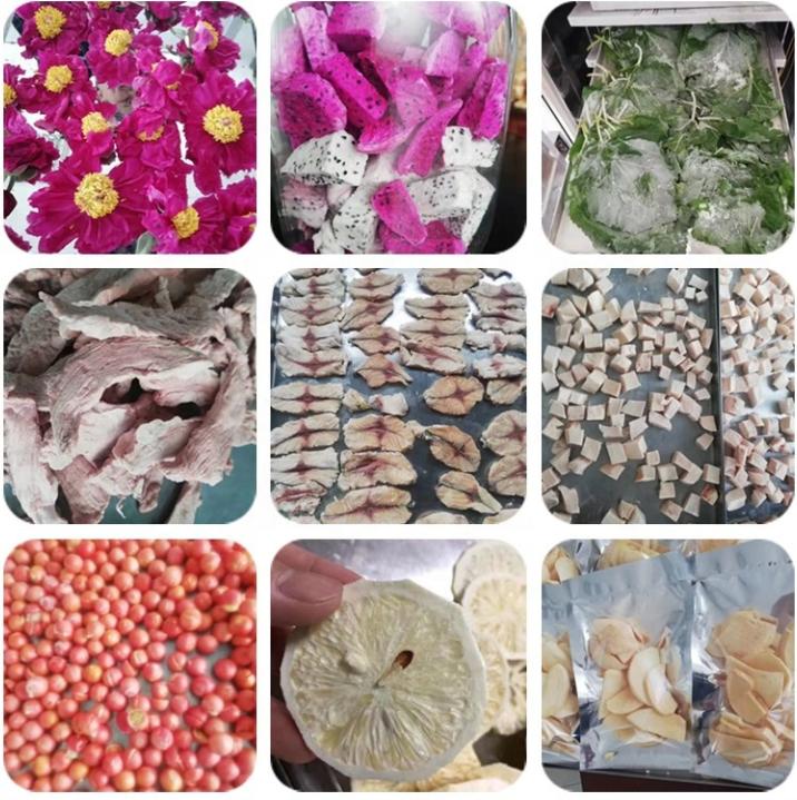 Мини Промышленная Вакуумная сушилка для пищевых продуктов, цена