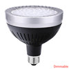 Silver (Dimmable)