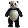 Panda jungen