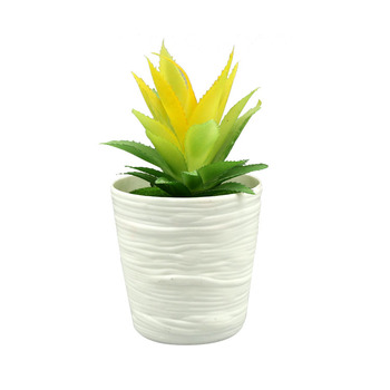 Manufacturers Sell Cheap High Quality Small Decoration Plant Pots Wholesale