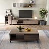 (B-TV cabinet + side cabinet + coffee table)-LS02ZHV1MB003