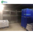carrot vietnam cold storage with condensing unit blast freezer ice cream refrigerators cooling vegetable storage