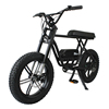 Eletric xe đạp 04